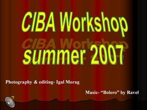SIBA - workshop - 2007