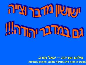 שטפונות במדבר יהודה - ינואר 2010
