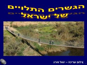 הגשרים התלויים של ישראל
