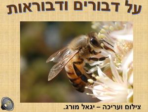 על דבורים ודבוראות