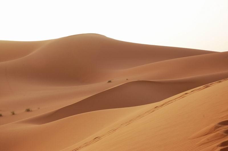 נופי הסהרה בתחומי מרוקו