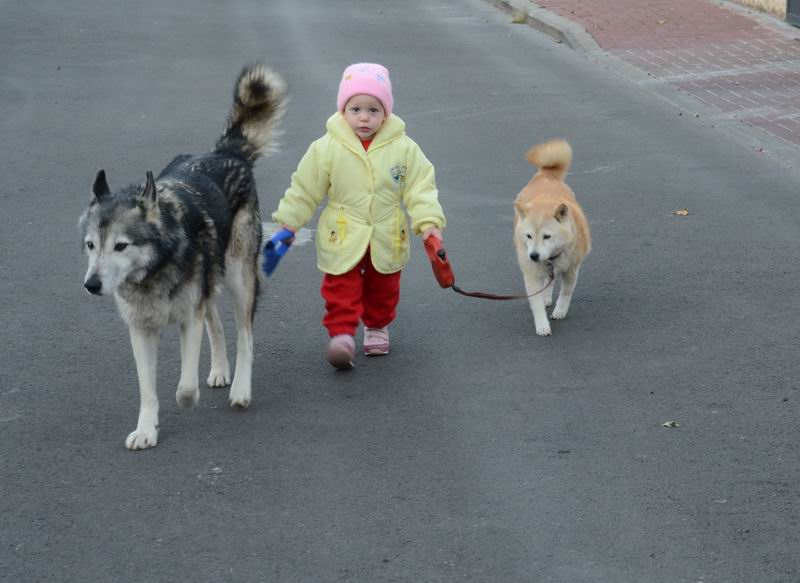נכדתי מיקה - הלוחשת לכלבים