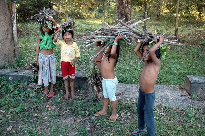 קמבודיה - ילדות באיסוף עצים