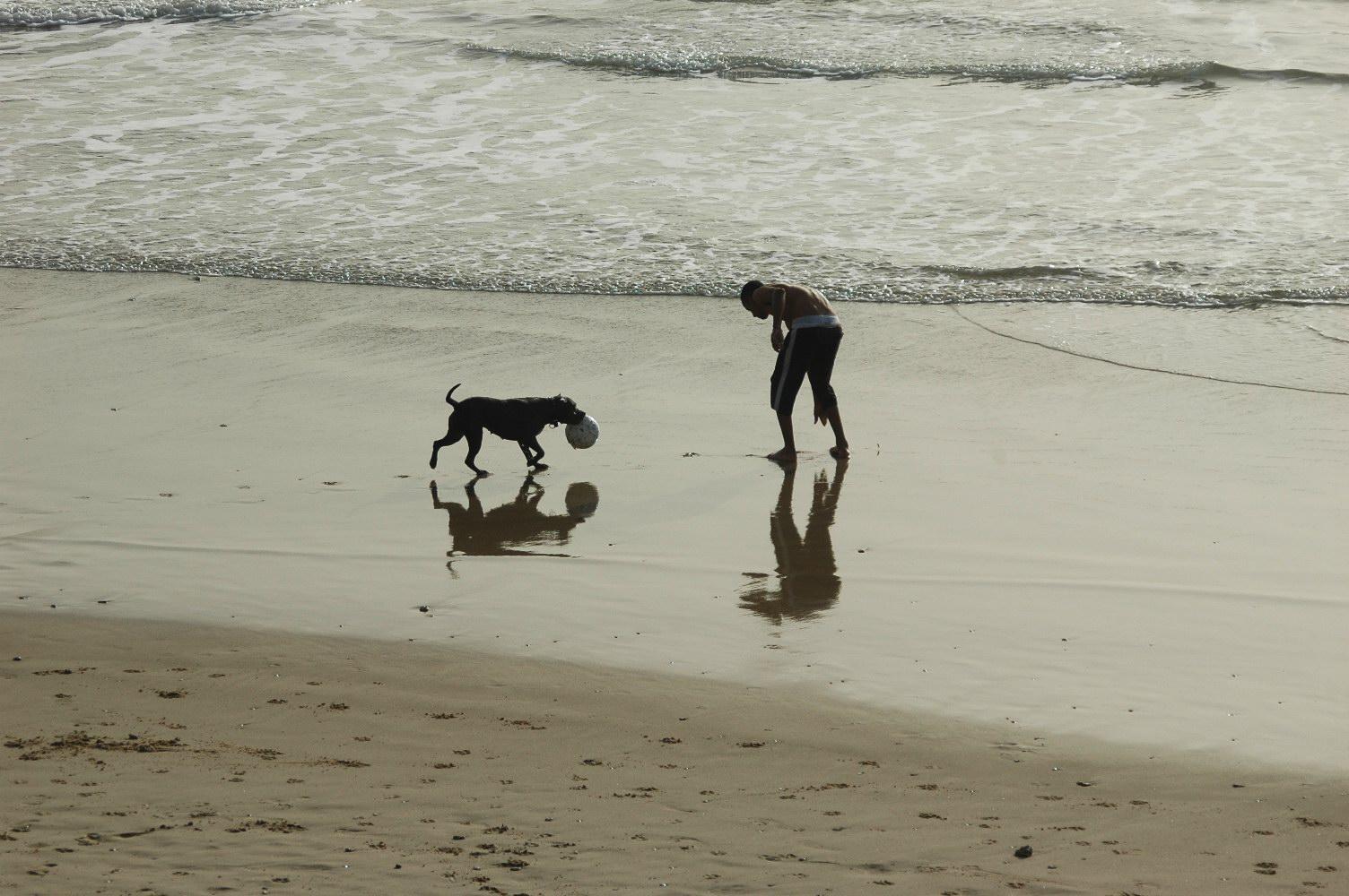 איש וכלבו בחוף הים