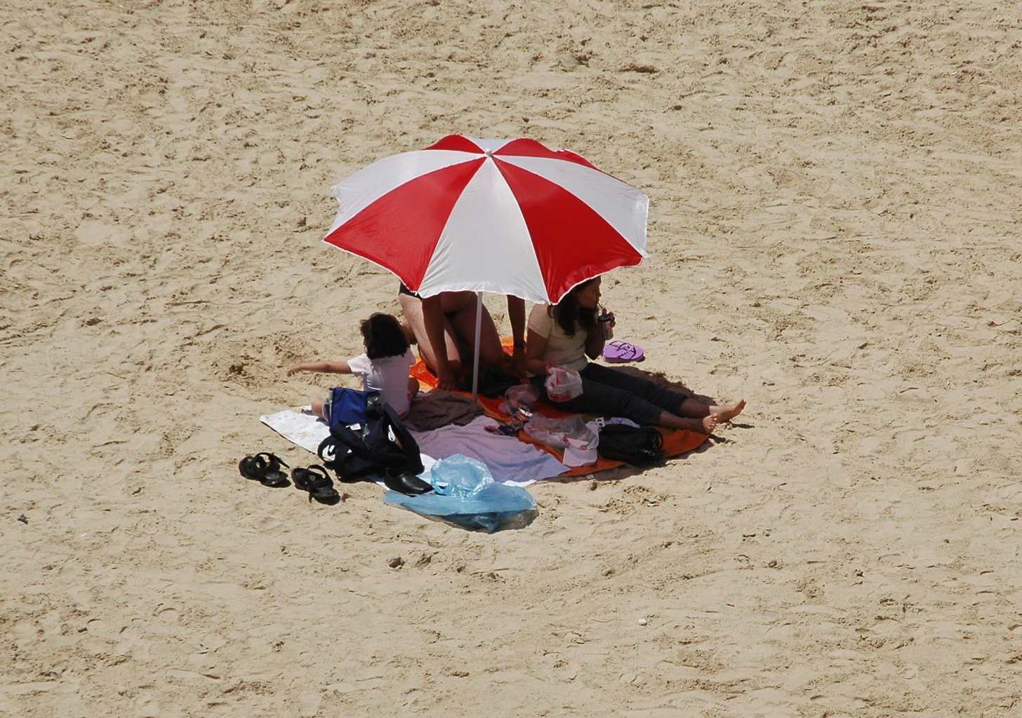 בחוף יפו