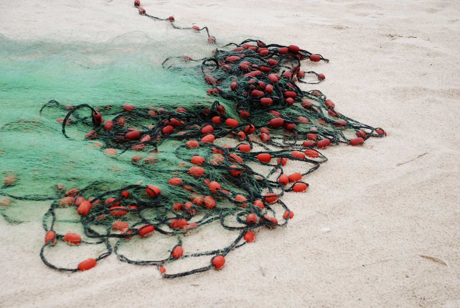 רשתות דייג