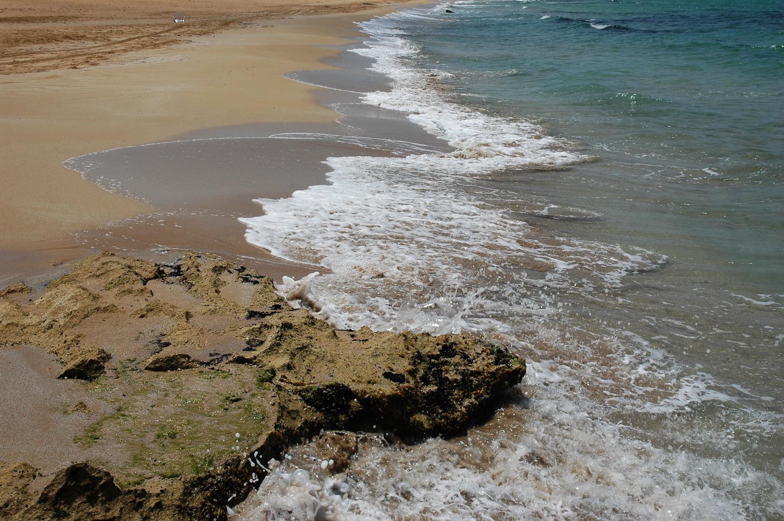 אדוות גלי חוף