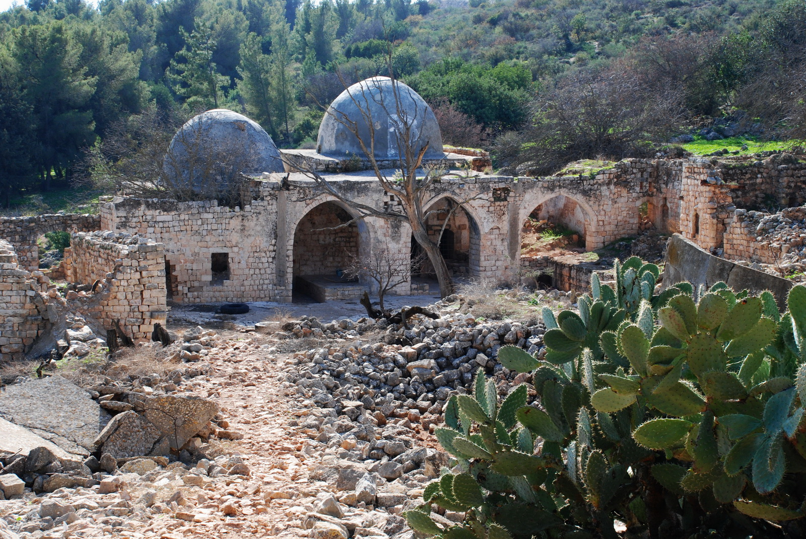 גליל עליון - נבי יושע - קבר הנביא