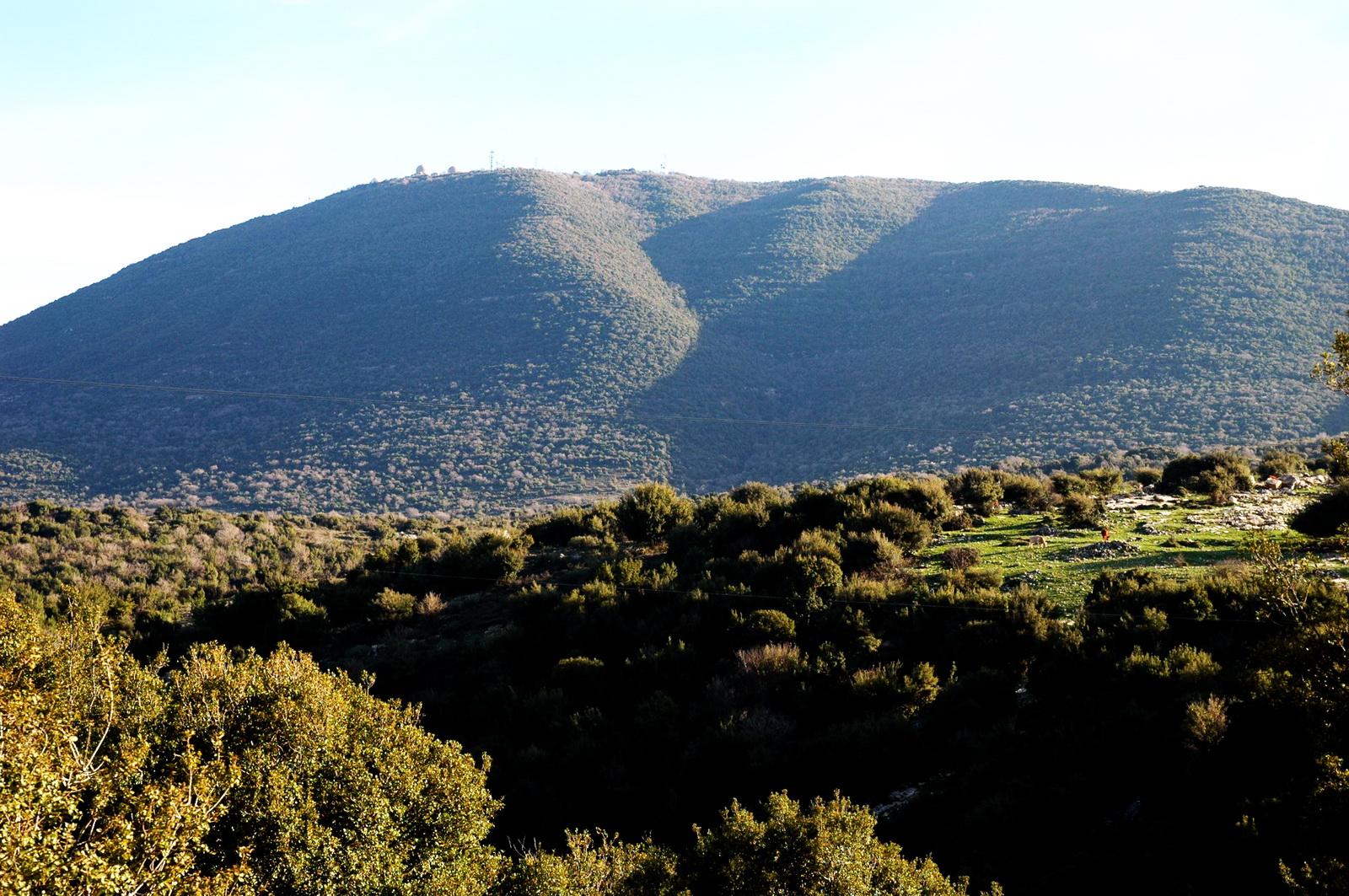 גליל עליון - הר מירון