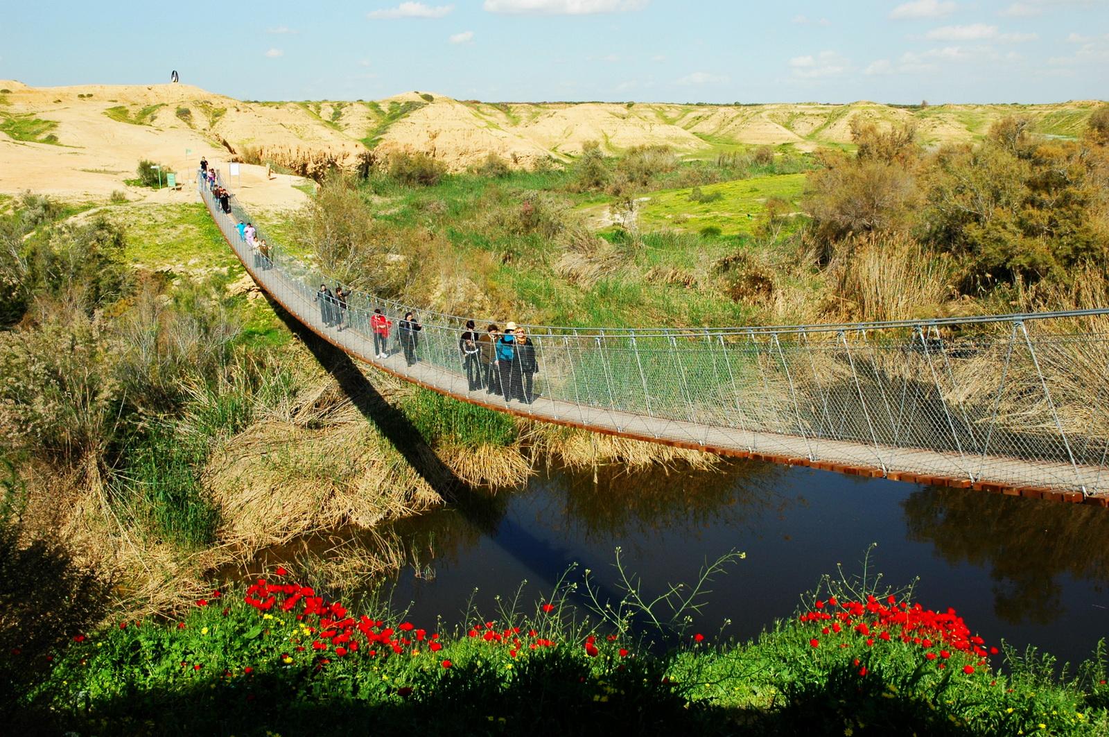 נחל הבשור - הגשר התלוי
