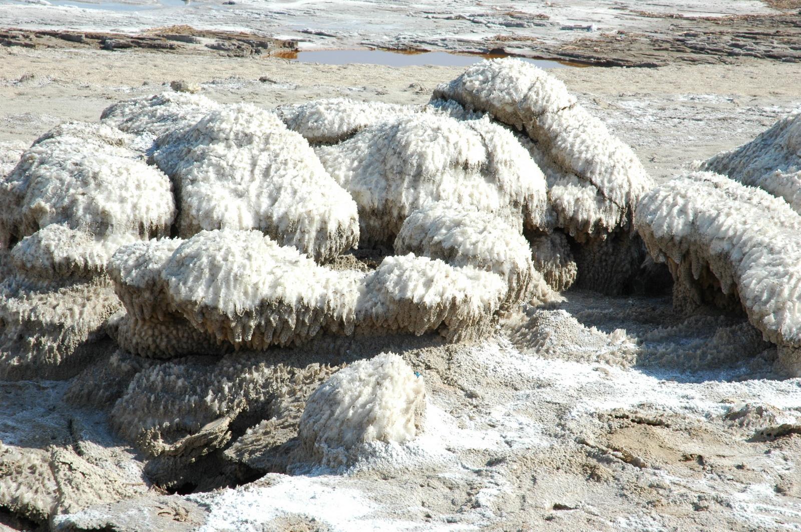 ים המלח -   התגבשויות מלח על סלעים