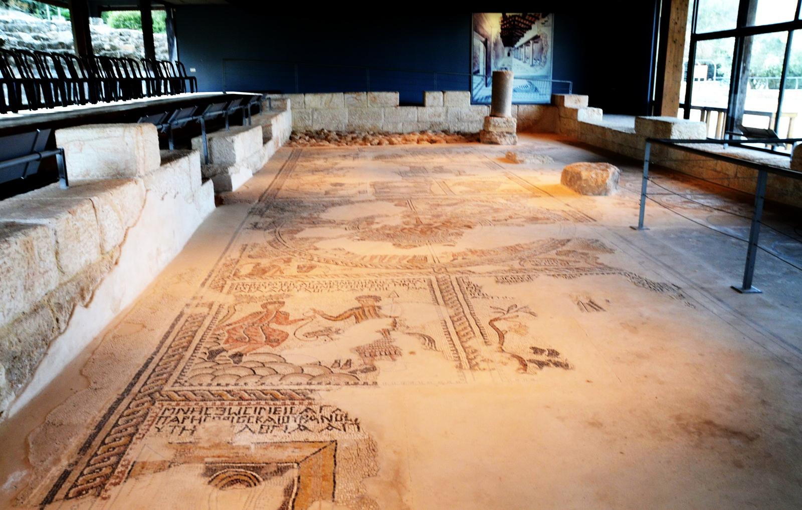 גליל תחתון - ציפורי - מבט כללי של שרידי פסיפס בית הכנסת