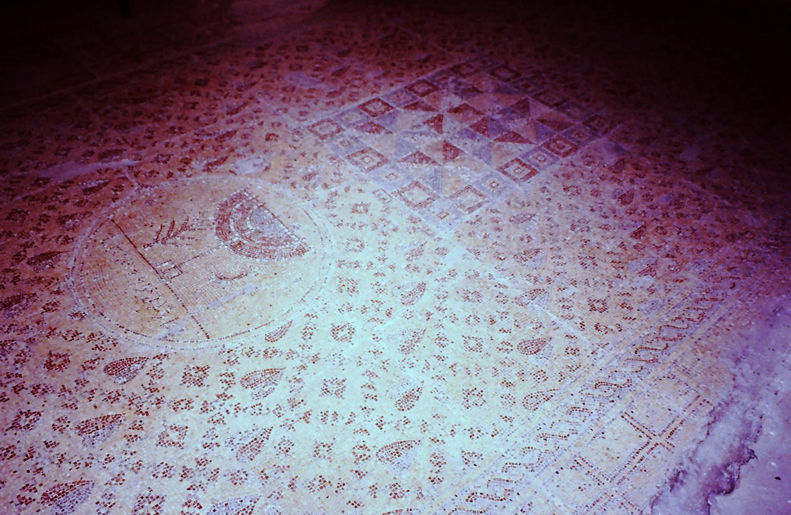 בית הכנסת ביריחו - רצפת הפסיפס כולה
