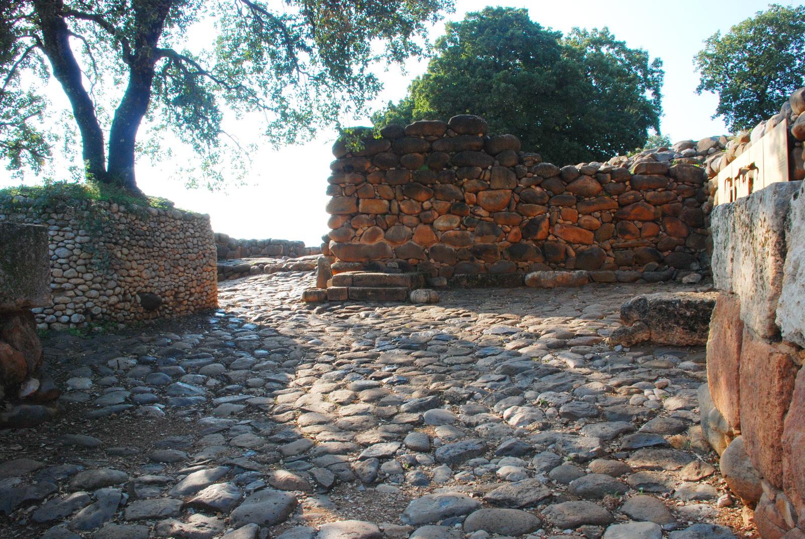 דן - שער העיר ומושב המלך בכניסה